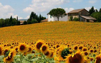 REPORTE`en  avril 2021. Voyage culturel en Ombrie: Le cœur vert de l'Italie.